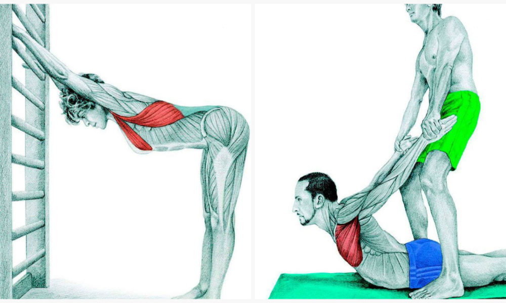 Комплекс упражнений для растяжки мышц и сухожилий