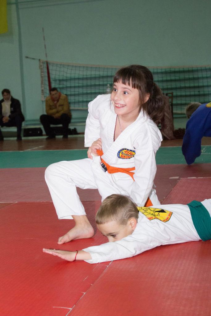 Карате, айкидо, Джиу-джитсу, дзюдо, ушу, кунг-фу, рукопашный бой, бокс